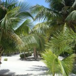 Luxurious Beachfront house for sale in Mahahual Mexico