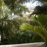 Versailles in Merida - Unique Luxury home in Yucatan for sale