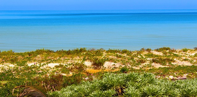Oceanfront Beach Lot in San Bruno Yucatan Mexico for sale