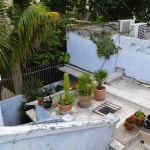 House for sale in Santa Ana Merida 20