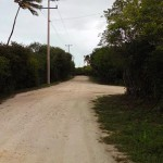 Modern Maya Bungalow by the beach in Yucatan for sale21