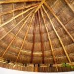 10Beach Home for sale Chicxulub Yucatan Mexico