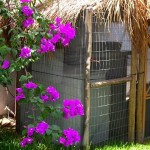 5Beach Home for sale Chicxulub Yucatan Mexico