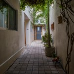 19-6 Bed and Breakfast for sale in Merida Yucatan Mexico