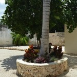 32 Two Houses for Sale in Meida Casa Two
