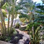 la Bella Vida 1125 House in Merida for sale 10