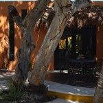 Chelem Beach Home for Sale 23