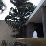 Mid century modern house for sale in Merida Yucatan Mexico 15