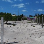 Lot for sale beach Mexico 20170319_133818