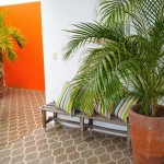 Colonial home for sale in Merida 26