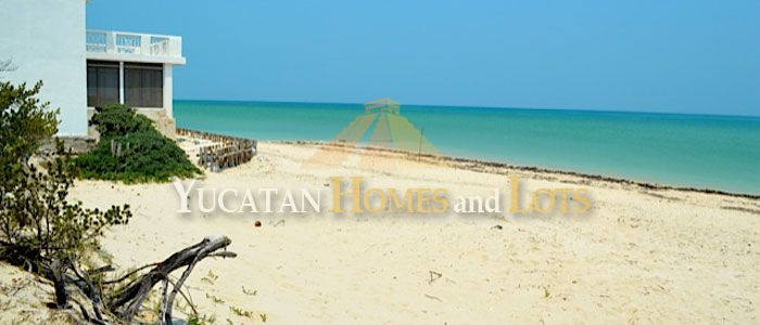 Beach lot for sale in Chuburna Yucatan Mexico