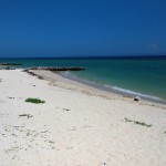 1 Big Beach Home in Chelem Yucatan for sale