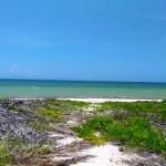 San Crisanto Yucatan beachfront lot for sale 1499897200475