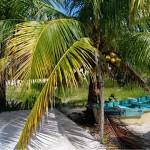 Chicxulub Yucatan beach house for sale 20170928_142025