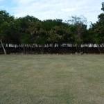 Lot for sale near Polo Club Merida Yucatan DSC_0122