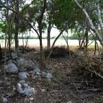 Lot for sale near Polo Club Merida Yucatan DSC_0127