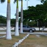 Lot for sale near Polo Club Merida Yucatan DSC_0141