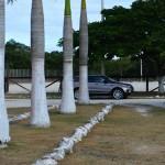 Lot for sale near Polo Club Merida Yucatan DSC_0142