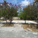 12 elegant home for sale in Merida Yucatan