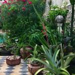 33 Garden Deluxe villa for sale in Merida Yucatan Mexico