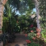 37 Garden Deluxe villa for sale in Merida Yucatan Mexico