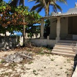 IMG_0892 - Beach House Project Yucatan Mexico for sale