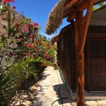 IMG_0956 Beach Bungalow for sale in Yucatan Mexico