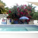 pool Oasis compound property for sale in Telchac Yucatan Mexico