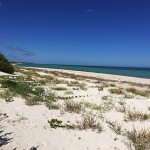 Beachfront property for sale in Yucatan Mexico