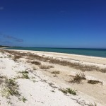 Beachfront property for sale in Yucatan Mexico IMG_4749