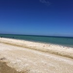 Beachfront property for sale in Yucatan Mexico IMG_4750