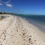 Beachfront property for sale in Yucatan Mexico IMG_4762