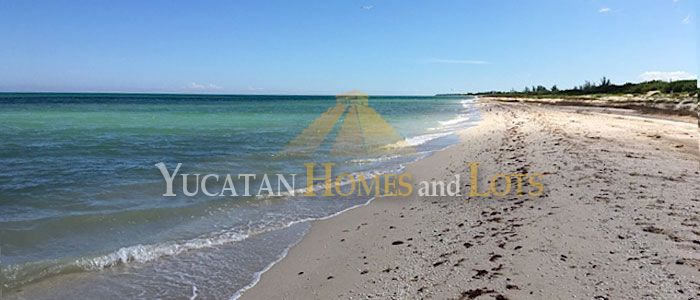 Beachfront property for sale in Mexico Yucatan