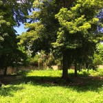 Colonial in Chuburna Merida Yucatan Mexico for sale16