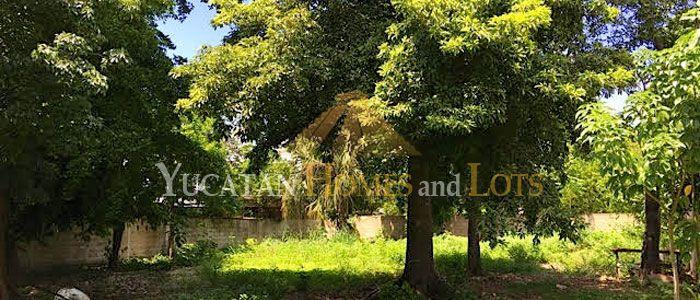 Colonial in Chuburna Merida Yucatan Mexico for sale