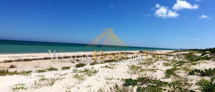Beachfront property for sale SIsal Yucatan Mexico