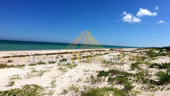 Oceanfront lots for sale in Yucatan Mexico