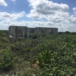 Beachfront land with plans in Sisal Yucatan 01