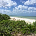 Beachfront land with plans in Sisal Yucatan 02