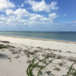 Beachfront land with plans in Sisal Yucatan 05