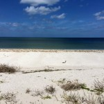 Beachfront land with plans in Sisal Yucatan 06