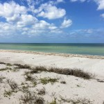 Beachfront land with plans in Sisal Yucatan 08