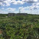 Beachfront land with plans in Sisal Yucatan 36EE755D-C548-496F-AB51-BA3FF9E5A6D5