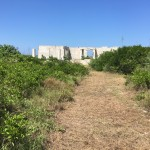 Beachfront land with plans in Sisal Yucatan 604F7741-17E0-4F03-9AE3-0D07EB05A33F