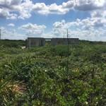 Beachfront land with plans in Sisal Yucatan 9172A581-5A04-465B-9C44-C4612F333D9E