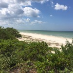 Beachfront land with plans in Sisal Yucatan B1CDA161-883A-4A66-B6D8-1059E6E5C707
