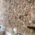 Starter home in Santiago for sale in Merida Yucatan Mexico IMG_5925