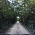 Country lot in North Merida for sale 3