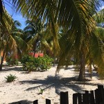 Beachhouse for sale in Yucatan IMG_7446
