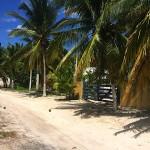 Santa Clara Mexico beach house for sale IMG_9102